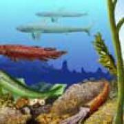 Devon – immer mehr Fische (© Zoologisches Institut Göttingen, Planet Poster Editions)
