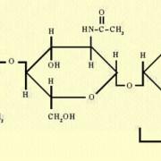 Strukturformel von Chitin