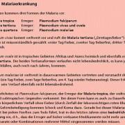 Formen der Malariaerkrankung