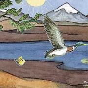 Ökosystem als Einheit von Biotop und Biozönose