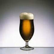 Bier hat ein typisches Aussehen und eine Schaumkrone.