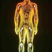 Titannachbildung des menschlichen Körpers