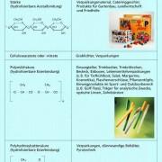 Biologisch abbaubare Polymere aus nachwachsenden Rohstoffen