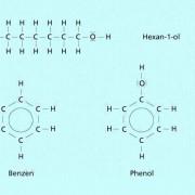 Phenol weist zwar ebenso wie Hexanol eine Hydroxy-Gruppe und sechs Kohlenstoffatome im Molekül auf, ähnelt in der Struktur aber eher dem Benzen.