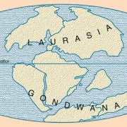 Die Urkontinente Gondwana und Laurasia vor etwa 150 Mio. Jahren.