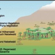 Höhenstufen des Klimas und der Vegetation