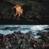 Die ausgewachsenen Roten Kliffkrabben bedecken zahlreich den schwarzen Lavafelsen.