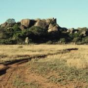 """Inselberge, Felseninseln, die hier """"Kopjes"""" genannt werden, sind ein spezieller Lebensraum für Tiere und Pflanzen in der Serengeti."""