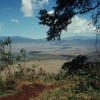 Blick vom südlichen Kraterrand des Ngorongoro auf die 600 m tiefer liegende Kratersohle