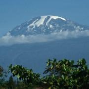 Blick aus der Savanne im Süden auf den Kilimandscharo (5892 m) mit seinen Gletschern und die typische, sich täglich gegen Mittag bei 3000 m bildende, Wolkendecke