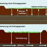 Bewässerungsfeldbau und Verhinderung von Bodenversalzung