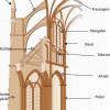 Gotisches Strebewerk:Eine gotische Hochschiffwand ist stets dreigeschossig. Sie besteht aus den Arkaden, darüber befindet sich das Triforium. Der Obergaden schließt die Hochschiffwand ab.Das Kreuzrippengewölbe leitet den Gewölbeschub über die Pfeiler, die