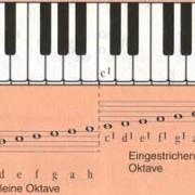 Klaviertastatur (Klaviatur), Stammtöne und Oktavbereiche