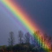 Bei einem Regenbogen ist stets ein Farbband mit einer bestimmten Abfolge der Farben zu beobachten.