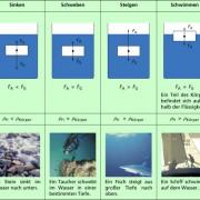 Sinken, Schweben, Steigen und Schwimmen von Körpern in Physik ...