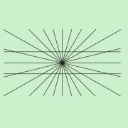 Es scheint so, als ob die beiden waagerechten Linien gebogen sind. Mithilfe eines Lineals kann man sich aber leicht davon überzeugen, dass es Geraden sind.