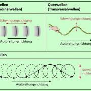 Unterscheidung mechanischer Wellen nach dem Verhältnis von Schwingungsrichtung und Ausbreitungsrichtung