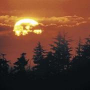 Die Sonne ist für uns nicht nur die wichtigste Lichtquelle, sondern auch die wichtigste Wärmequelle.
