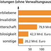 Aufteilung der Sozialleistungen nach Funktionen (2011)