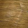 Der Querschnitt zeigt die Jahresringe im Holz. Jedes Jahr kommt ein neuer Ring hinzu.
