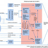 Das politische System der Europäischen Union (Stand 2011)